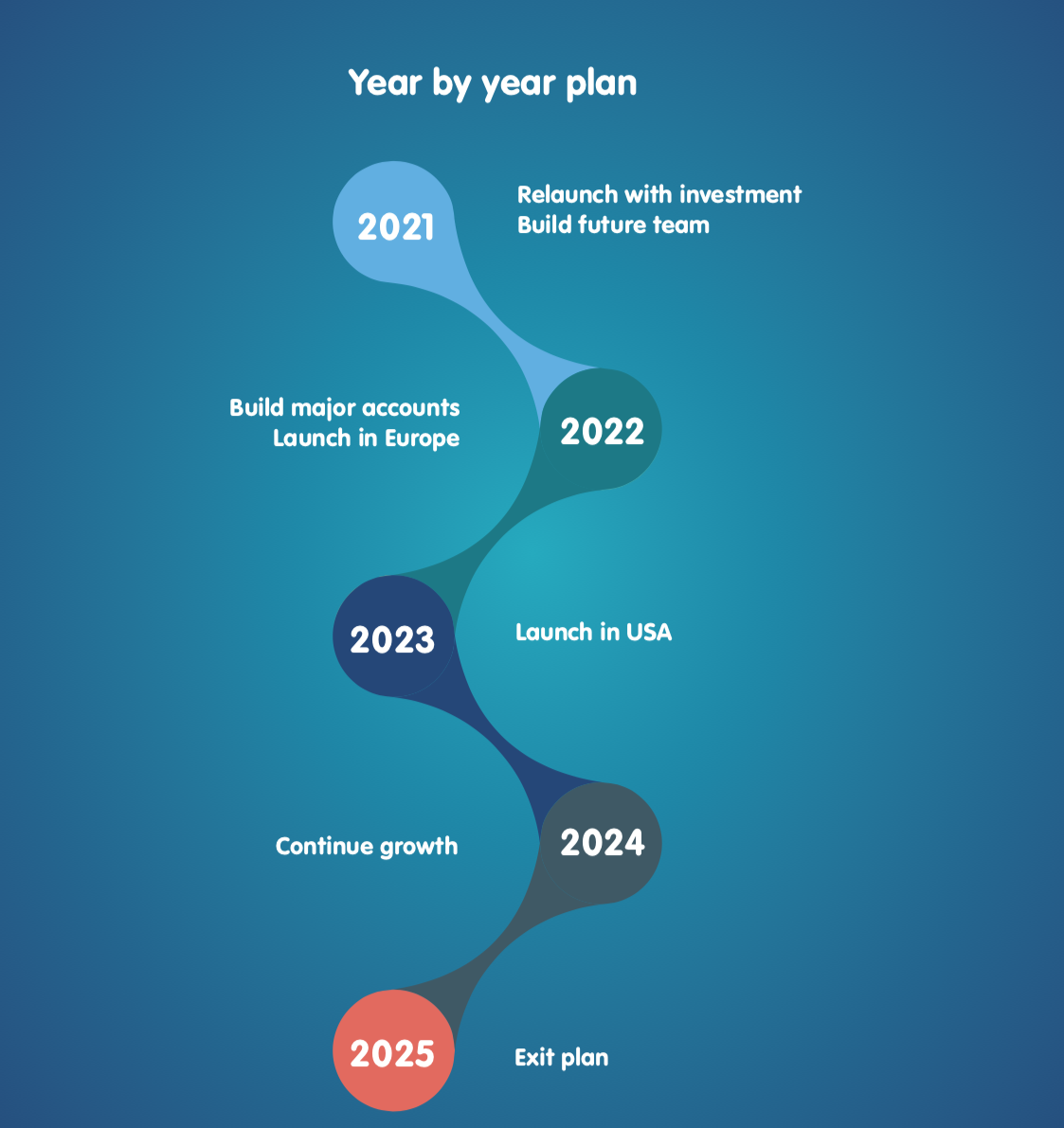 Our 5 year plan for investors